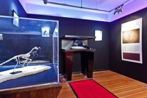 Ausstellungsraum Granada Gallery